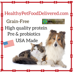 Healthy Pet Food Delivered | One World Pet